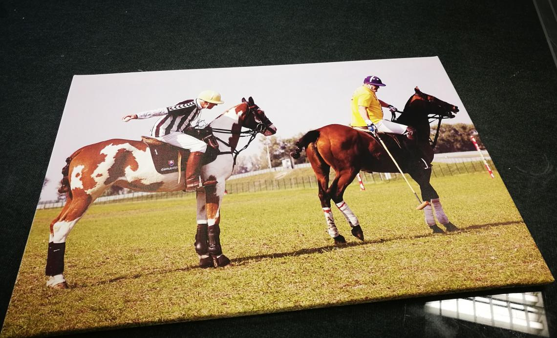 HORSE POLO 841x560 mm (CANVAS)