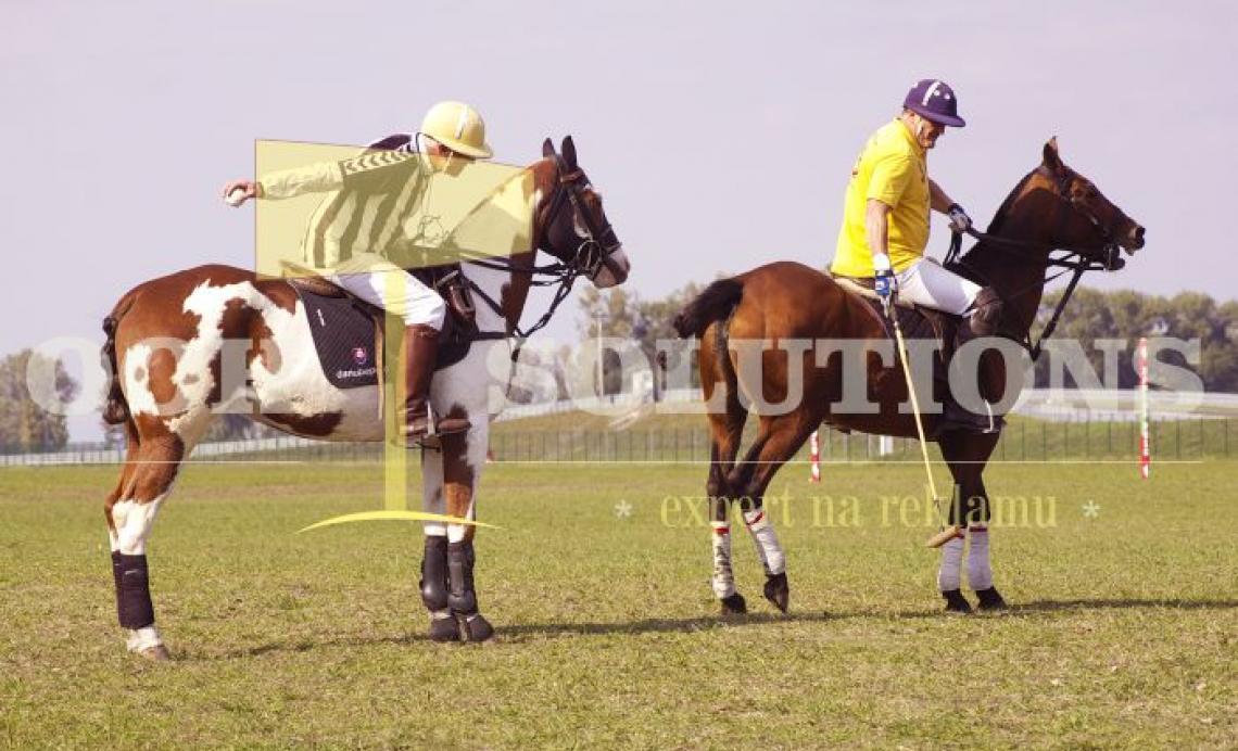 HORSE POLO 841x560 mm (CANVAS)